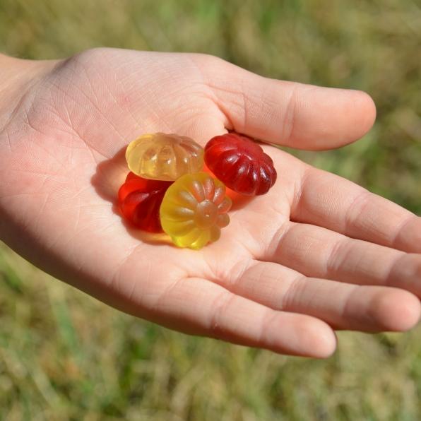Luehders Fruity Flowers Vegan Gummi.