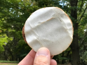 Lebkuchen Cookie.