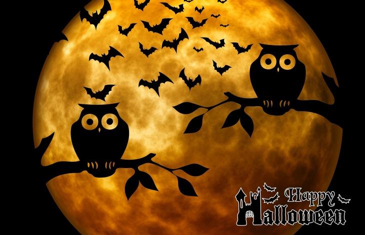 halloween-975519_1920.jpg