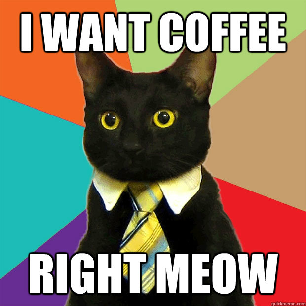 coffee-business-cat